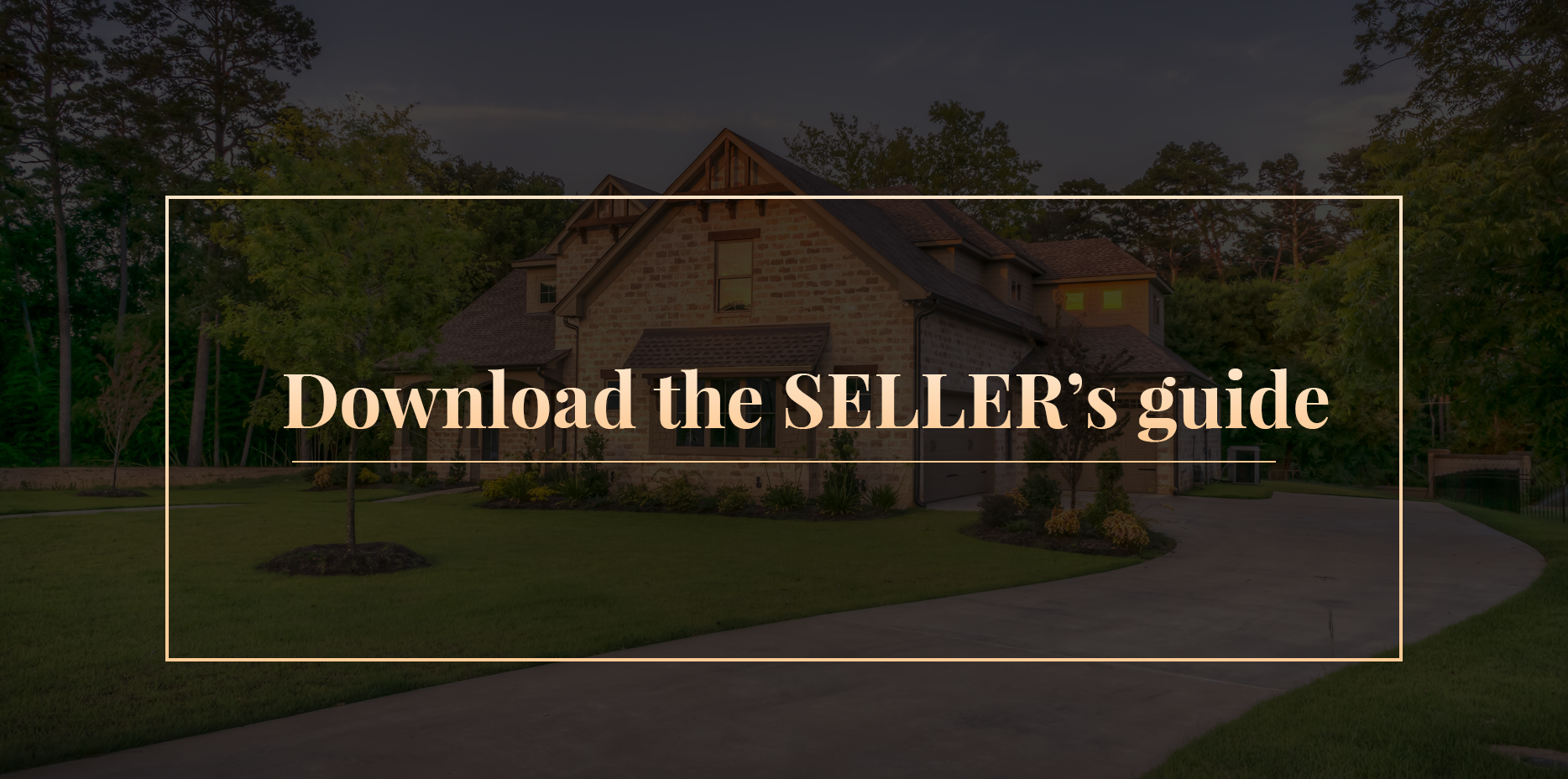 download sellers guide